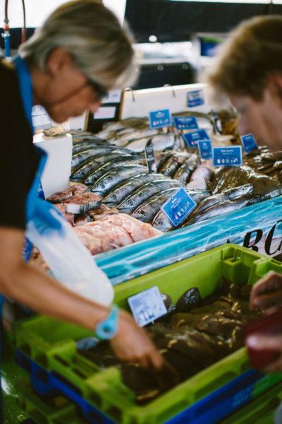 19 bateaux de pêche approvisionnent tous les jours, lorsque les conditions météorologiques le permettent, les stands du marché aux poissons.