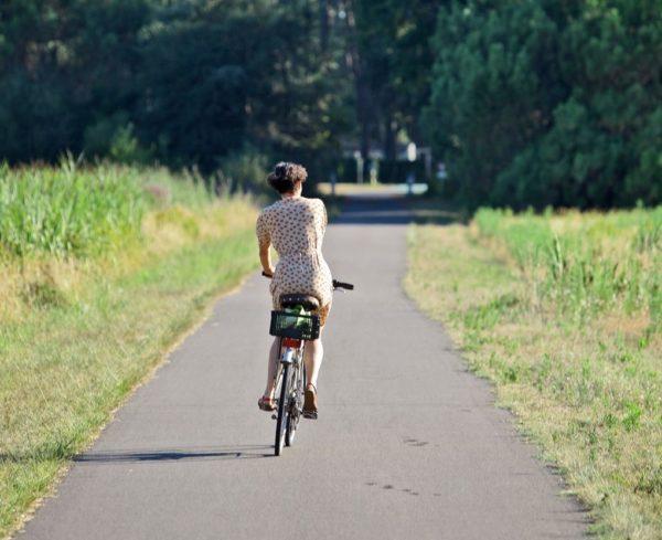 une balade en velo dans la forêt landaise sur la piste cyclable