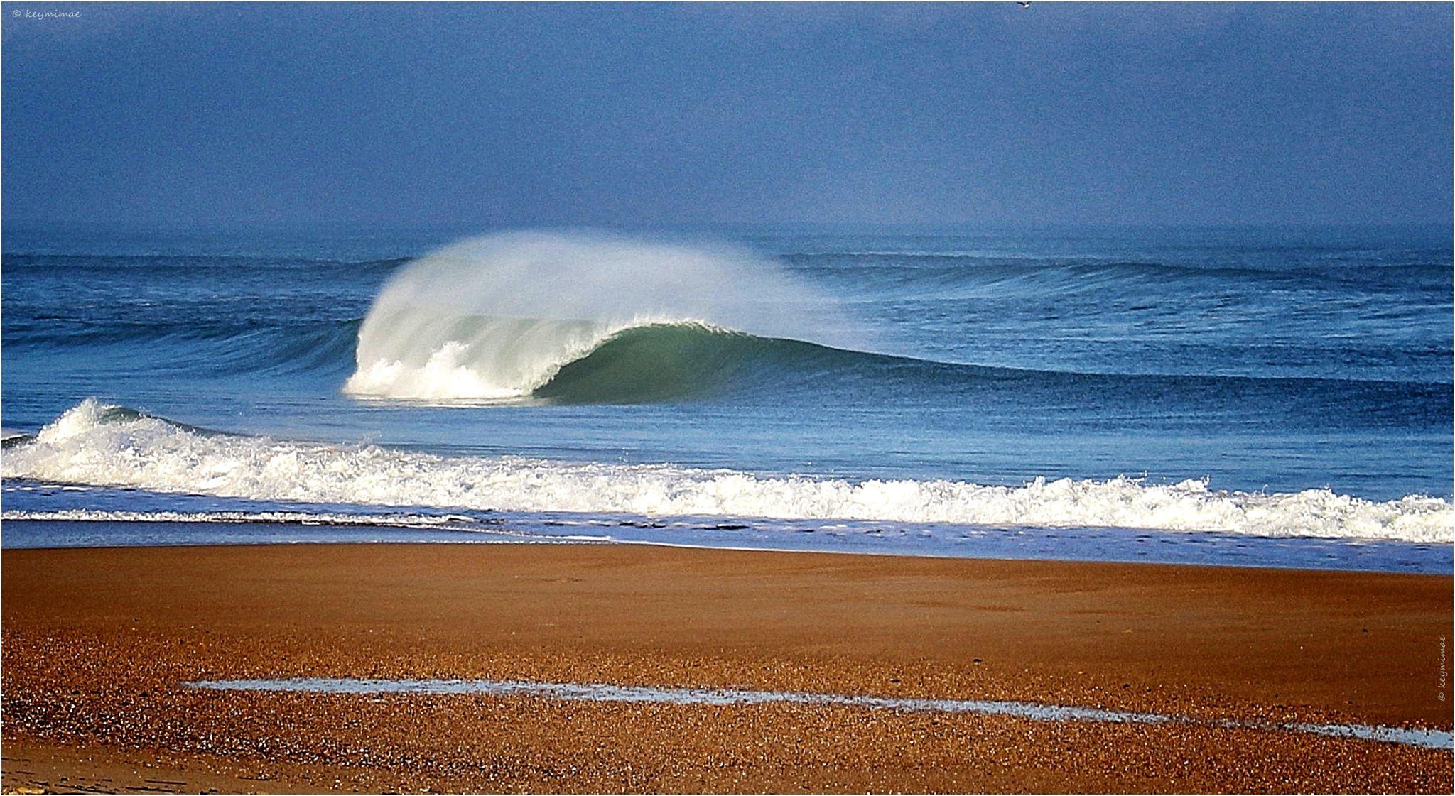 ocean-plage-vague