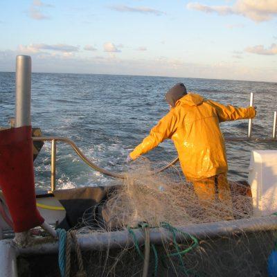 Mon aventure pescatourisme