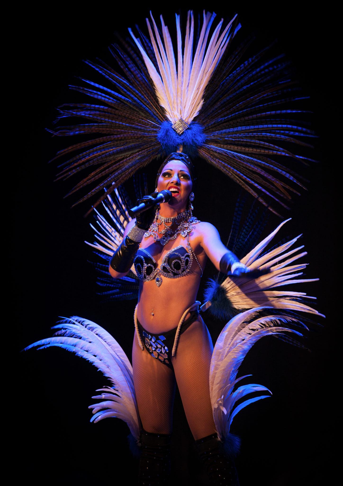 1er de l'an, 31 décembre, soirée spectacle cabaret dans les Landes