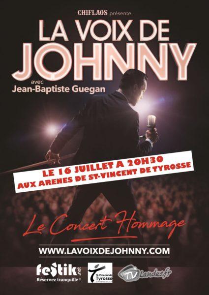La voix de Johnny