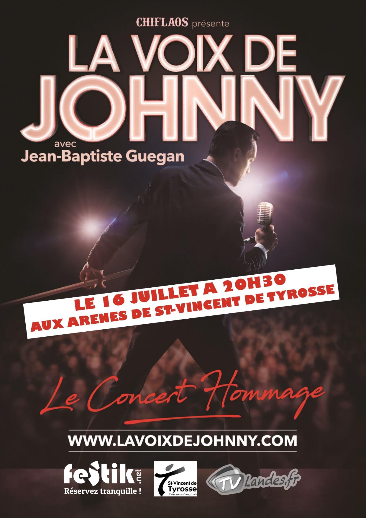 La voix de Johnny Concert de l'été à Tyrosse