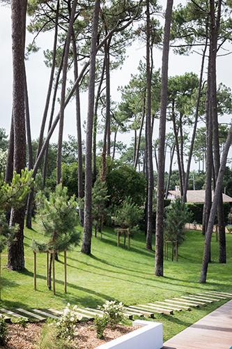 20.hortensias du lac – hossegor – TRYann Deret 5363