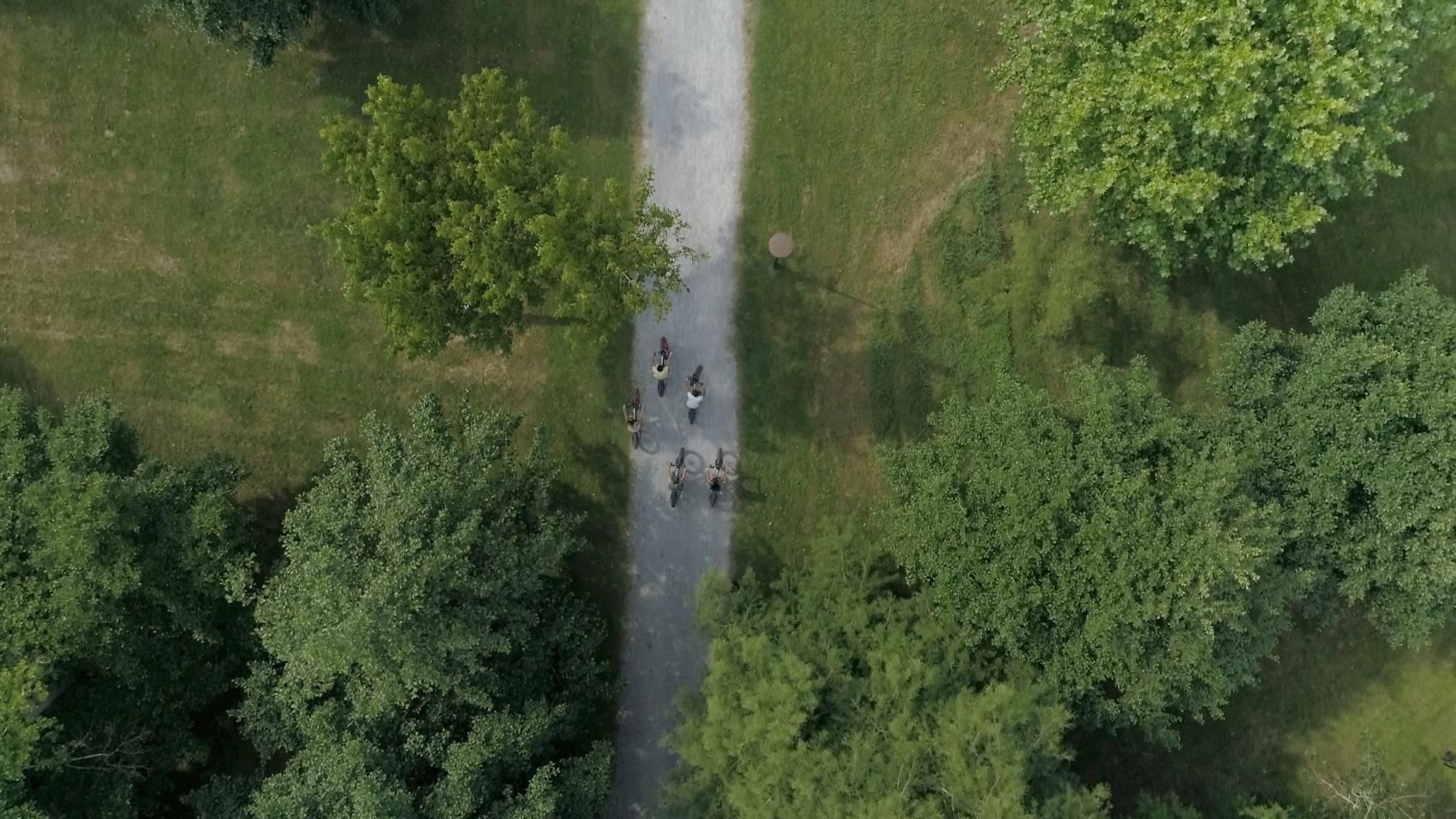 Vélo dans la forêt des Landes (soustons)