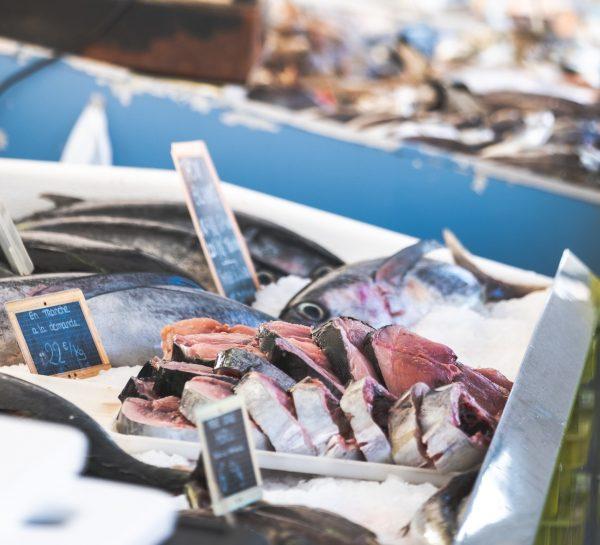 Marché aux poissons à Capbreton