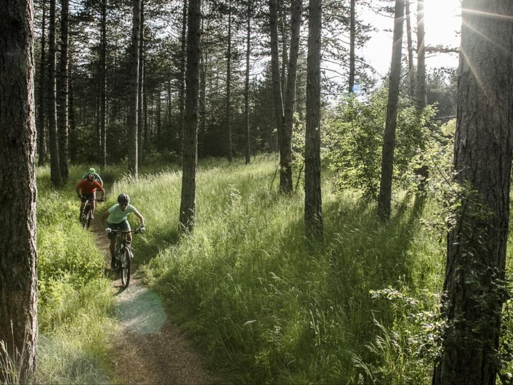 Cyclo landes 2020