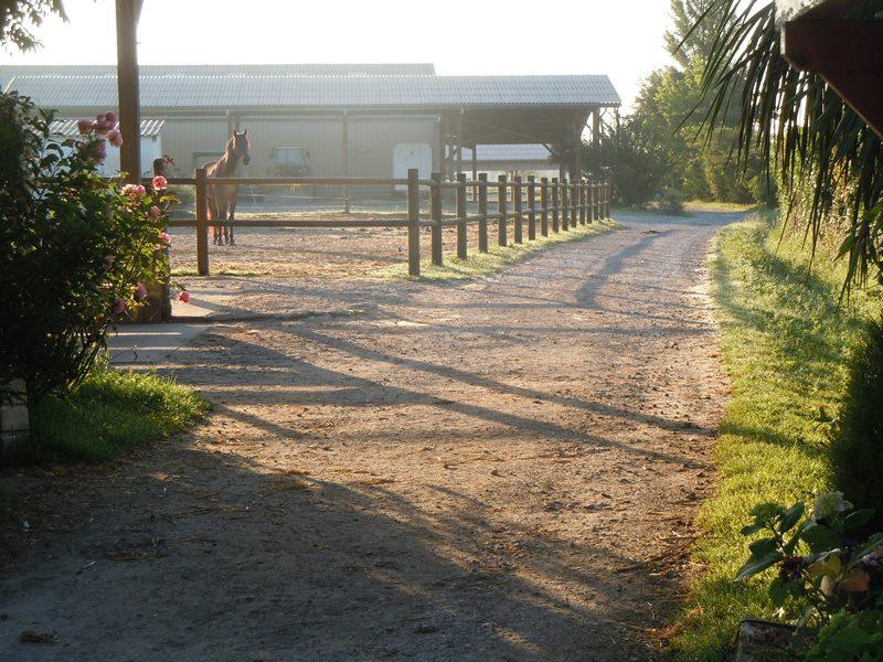 Ecole Equitation Le Menusé_St Jean de Marsacq_Landes Atlantique Sud (4)