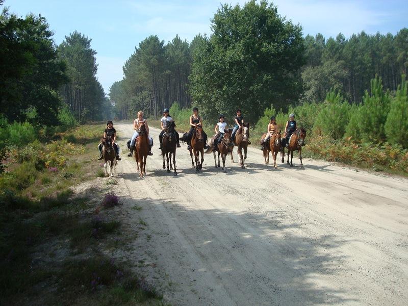 Ecole Equitation Le Menusé_St Jean de Marsacq_Landes Atlantique Sud (7)
