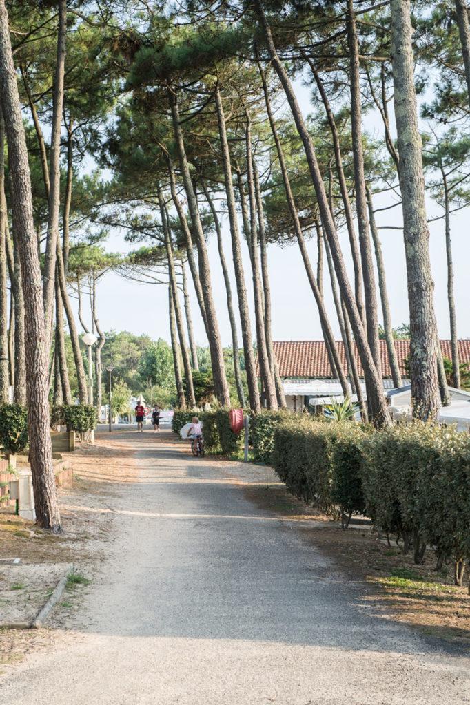 Les-Sableres-Vieux-Boucau-Landes-Atlantique-Sud-12