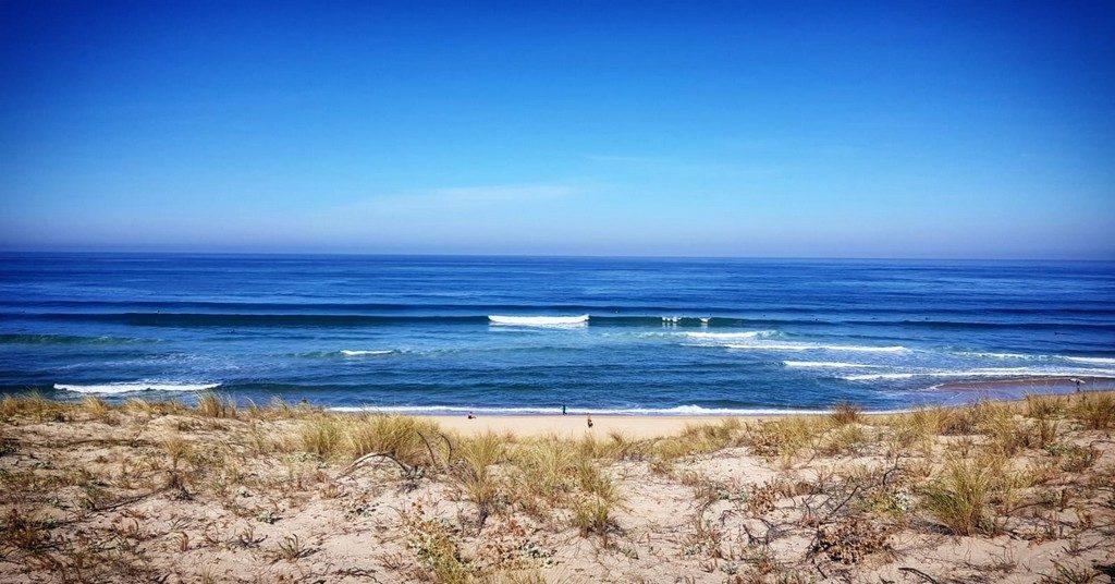 NATURE SURF CAMP MESSANGES LANDES ATLANTIQUE SUD (6)
