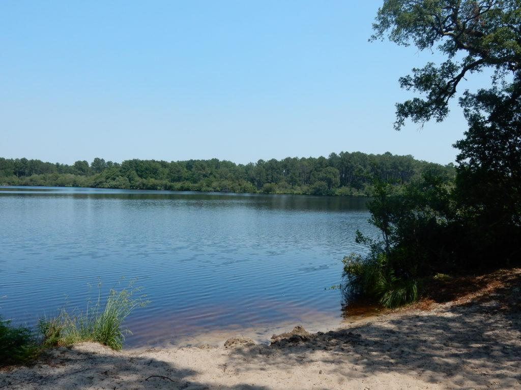 L'étang de Moliets