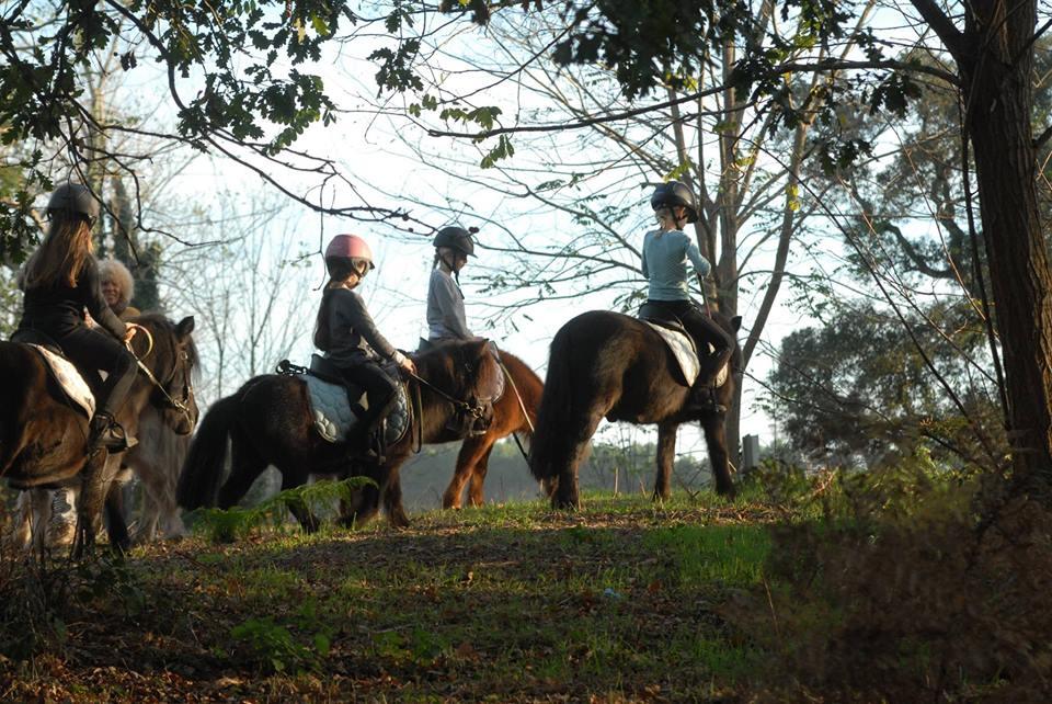 centre equestre la prade