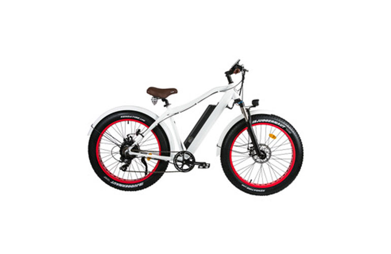 hossegor-bike-web-4